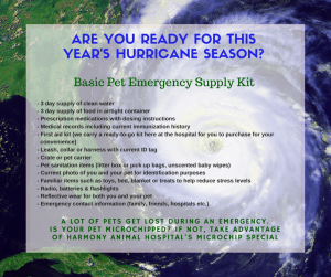 Hurricane Season 2015 (2)